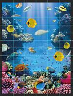 Кафель Подводный мир, плитка 20х30см.