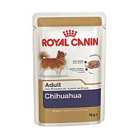 Консервы (влажный корм) для собак породы Чихуахуа Royal Canine CHIHUAHUA ADULT, 85 гр, 12шт в уп.