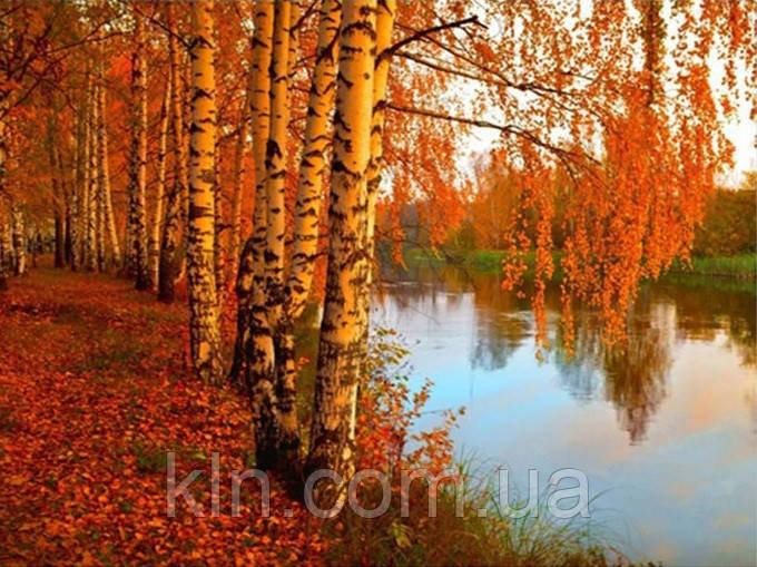 Алмазная вышивка Золотая осень KLN 30 х 40 см (арт. FS258)