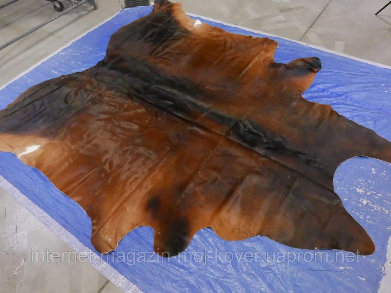 Шкура шоколадного кольору з рудими боками в інтер'єр