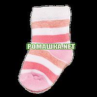 Детские махровые носки р. 56-62 для новорожденного 95% хлопок 5% эластен ТМ Ромашка 3197 Розовый
