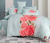Набор постельного белья двуспальный евро 200х220 Aran CLASY Ranforce Deborah V1