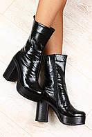 Ботинки женские на толстом устойчивом каблуке демисезонные черные кожаные под питон