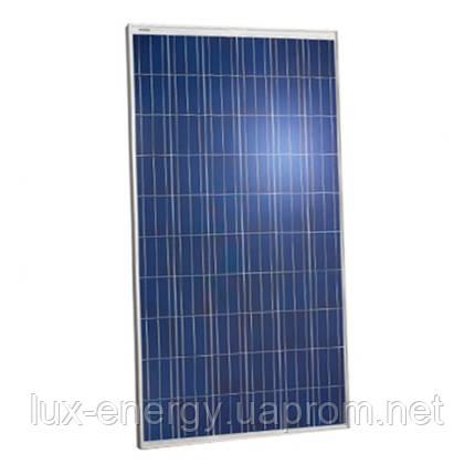 Солнечная панель Jinko Solar JKM260P-60, фото 2
