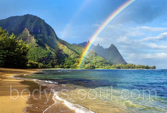 Віддушка для мила Гаваї, Floressence