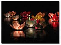 Водные фонарики, плавающие фонарики, водный лотос