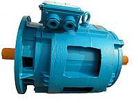 Электродвигатель АН160S6/18НЛБ