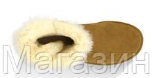 Женские угги UGG Australia Mini Bailey Button, мини угги австралия с пуговицей оригинал коричневые, фото 3