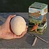 Яйцо динозавра - набор для раскопок