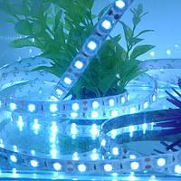 Светодиодная водостойкая лента для подсветки аквариума 5050 SMD 300 шт. диодов - 5м. (без блока питания)