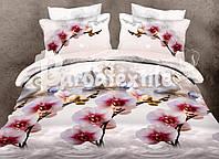 Комплект постельного белья Ренфорс