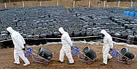 Утилизация пестицидов и ядохимикатов