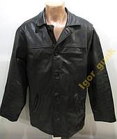 Куртка кожаная NICKLEBYS, L, ОРИГИНАЛ!