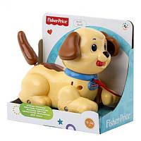 Каталка маленький щенок Снупи Fisher-Price Little Snoopy  H9447