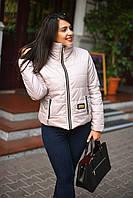 Х7074/1 Куртка весенняя на силиконе батал