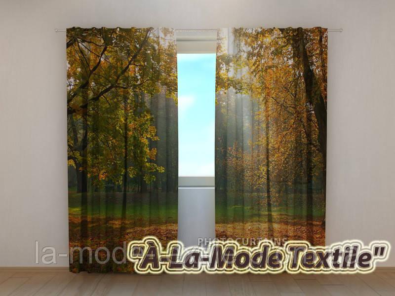 Фотошторы 3D Осень вариант 5