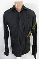 Рубашка MARKS&SPENCER, 38, COTTON