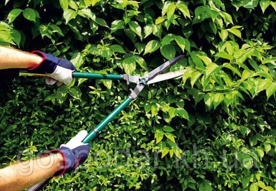 Ножницы садовые. Кусторез с выдвижными ручками.
