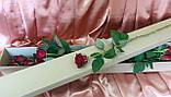 Упаковка для квітів 1000*100*100, фото 4