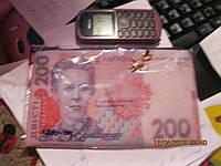 Косметичка кошелек УКРАИНА купюра 200грв деньги