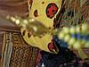Сережки жовто-блакитні Україна нові ошатні супер, фото 5