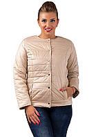 Женская короткая куртка (синтепон150)  р. 48,50,52 беж