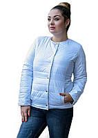 Женская короткая куртка (синтепон150)  р. 48,50,52 белая