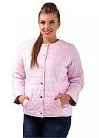 Женская короткая куртка (синтепон150)  р. 48,50,52 розовая
