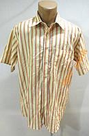 Рубашка PERFECTO, M, COTTON, КАК НОВАЯ!