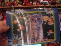 Коллекционеру открытка переливающаяся котенок кот