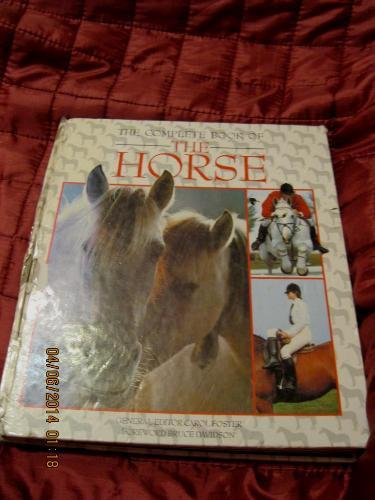 На английском языке книга кони лошадь HORSE 1983г