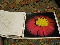 Книга флора цветы фото английский язык альбом