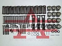 Набор для ремонта корзины сцепления двигателя СМД-14,15,19,20  (полный)