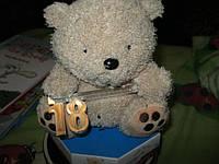 Мягкая игрушка ROLI BEAR МИШКА медведь игрушка юбилей С ЦИФРОЙ 18 РЕДКИЙ, фото 1