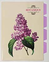 """Папка-уголок А4 с 4-я разделителями """"Botanique"""" L6195 Leo"""
