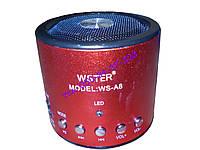 Портативная мини радио колонка WSTER WS-A8, фото 1