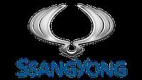 Мультипликатор Delphi на Ssang Yong EURO III