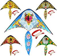 Воздушный змей M 2893 (5 видов)