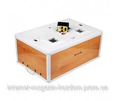 Инкубатор Курочка Ряба на 100 яиц в пластике с аналоговым терморегулятором  Харьков