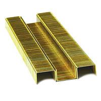 Скоба для степлера РТ-1610 6*12.8мм (0.9*0.7мм) 5000шт/упак. Intertool PT-8006
