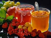 Стабилизатор ( для фруктовых начинок, пектиновый)