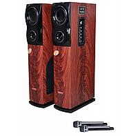 Стерео система колонки Temeisheng Y1 с функцией караоке + 2 радио микрофона