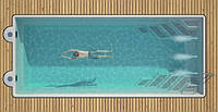 Композитный бассейн WANAKA 650 (стоимость чаши указана для базовой комплектации бассейна)