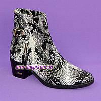 Ботинки женские демисезонные на устойчивом каблуке, кожа рептилия. 39 размер