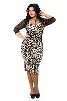 Леопардовое платье миди с кружевными рукавами и вставками