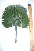 Ветка пальмы пластик большая, 40см, фото 1