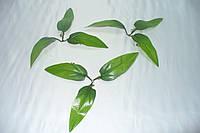 Листочек лилии, фото 1
