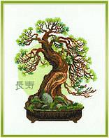 Набор для вышивания крестом «Пожелание долголетия» (1037), Риолис