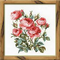 Набор для вышивания крестом «Садовые розы» (1046), Риолис
