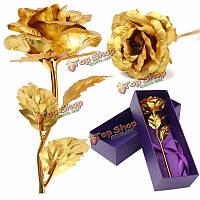 Новый золотой фольги гальваническим розы подарка дня золотой розы Валентина подарочной коробке декора цветок